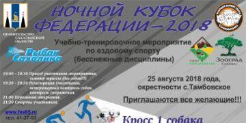 Ночной Кубок Федерации 2018
