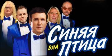 """ВИА """"Синяя Птица"""". Cолист Александр Дроздов"""