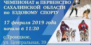 Чемпионат и Первенство Сахалинской области по ездовому спорту