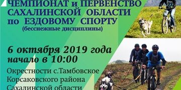 Шустрые лапы - 2019