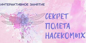 Секрет полета насекомых