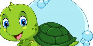 Черепаха. Традиции и символы Китая