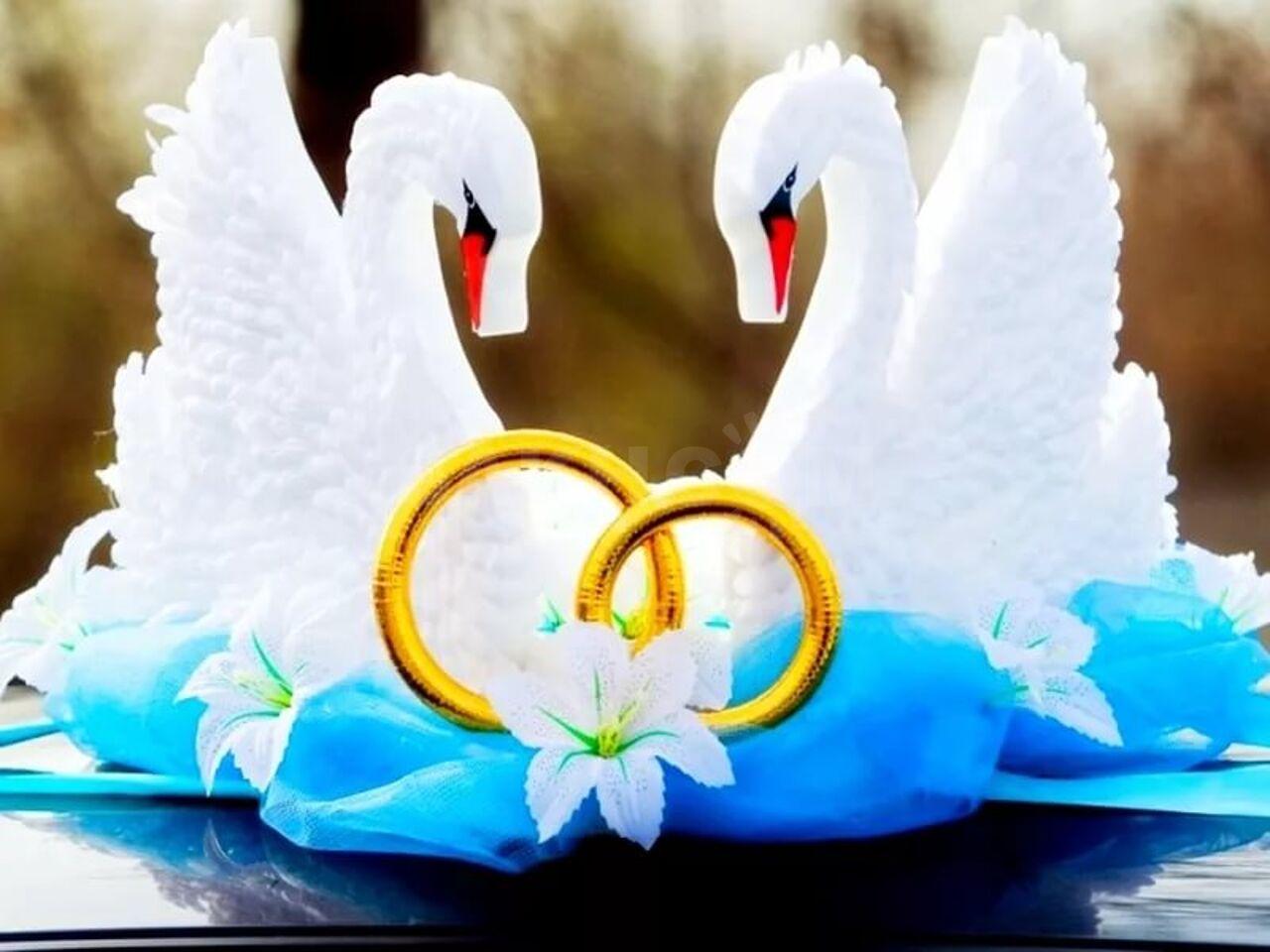 Размеры вечер, картинка с лебедями на свадьбу