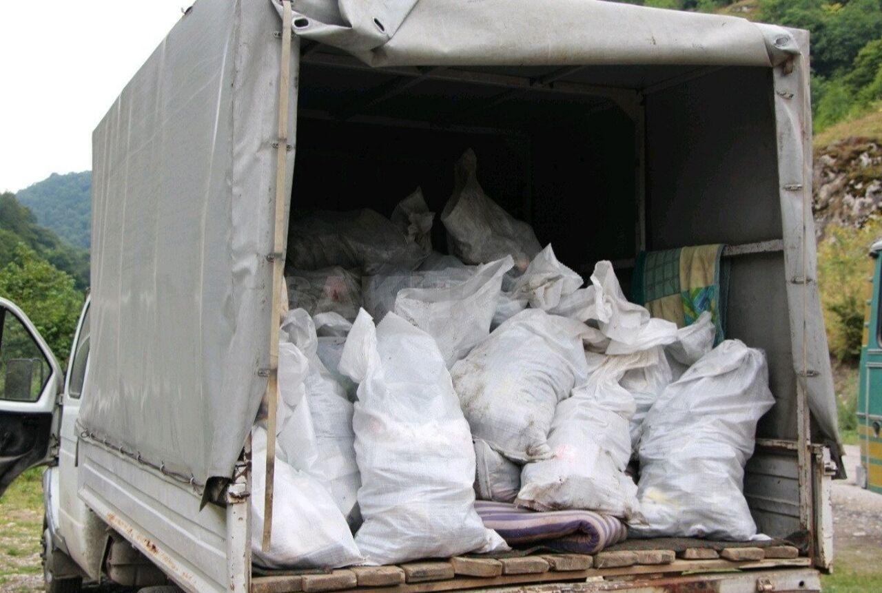разновидности юкки вывоз мусора картинки деток