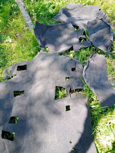 Ковровое покрытие салона