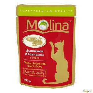 Molina - паучи для кошек Цыпленок и Говядина в соусе (100 гр)