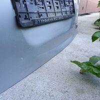 Дверь багажника wish